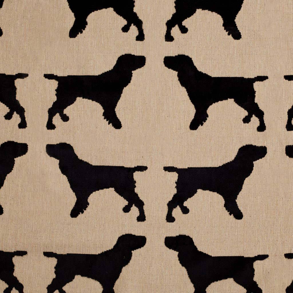 The Labrador Company-Import placeholder for 332 1