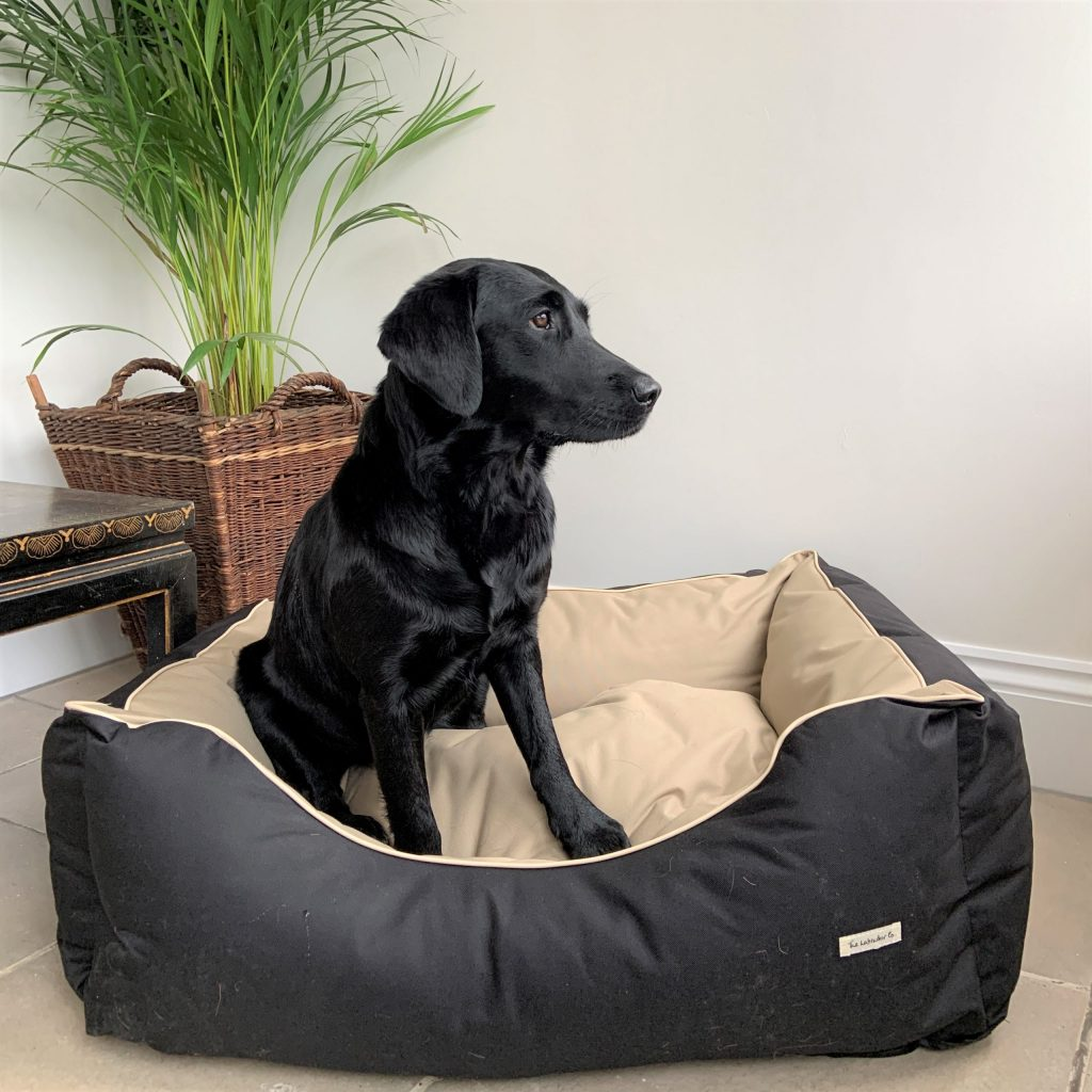 The Labrador Co.-Waterproof Bed 2